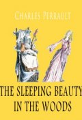 The sleeping beauty in the woods (Charles Perrault)